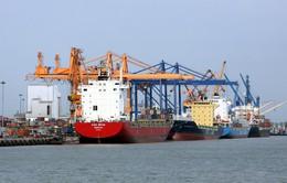 Hải Phòng tăng phí cảng biển, doanh nghiệp kêu cứu