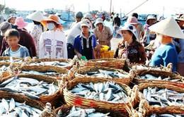 Thủ tướng chỉ đạo việc xử lý hàng hải sản tồn đọng tại 4 tỉnh miền Trung