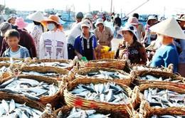 Quảng Bình phục hồi nuôi trồng thủy sản sau sự cố môi trường biển (17h25, ngày 10/3, VTV1)