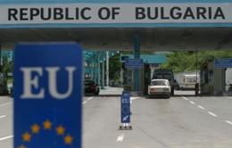 Hải quan Bulgaria đấu tranh chống hàng lậu, hàng giả