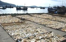 Góc khuất trong chế biến hải sản khô