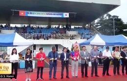 Sôi động giải bóng đá ICFood Cup của sinh viên Việt Nam tại Hàn Quốc