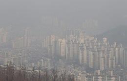 Hàn Quốc thiệt hại gần 9 tỷ USD mỗi năm do ô nhiễm không khí