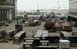 Lệnh cấm của Mỹ ảnh hưởng nhu cầu vận tải hàng không ở Trung Đông