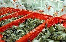Xuất khẩu tôm sang Trung Quốc tăng 30%