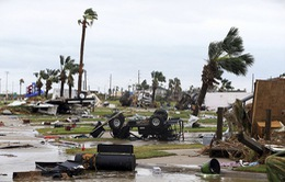 Số người thiệt mạng do bão Harvey tăng mạnh
