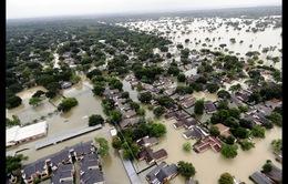 Thiệt hại của cơn bão Harvey có thể hơn 180 tỷ USD