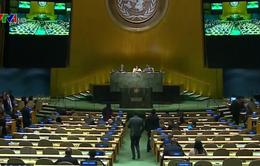 Gần 40 nước tẩy chay Hội nghị hạt nhân của LHQ