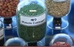 Hàn Quốc: Khuyến khích bảo vệ hạt giống thuần chủng