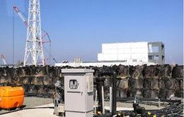 Fukushima không còn dấu vết của phóng xạ