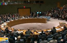 Hội đồng Bảo an LHQ không thông qua dự thảo nghị quyết về Syria