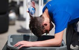Canada trải qua mùa thu nóng nhất trong 50 năm qua