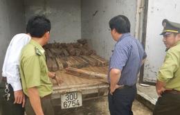 """Quảng Bình: Bắt giữ 100 khúc gỗ hương giáng """"trừ tà"""""""