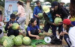 Thanh niên Quảng Ngãi giúp nông dân bán dưa hấu