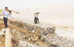 Đê biển Tây ở Cà Mau tiếp tục bị sạt lở