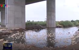 Xuất hiện nhiều vi phạm hành lang cao tốc Hà Nội – Hải Phòng