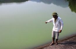 Hà Tĩnh: Gây ô nhiễm môi trường, hai trang trại bị phạt 55 triệu đồng