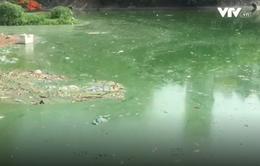 Nhiều sông hồ ở Hà Nội nhiễm dầu mỡ
