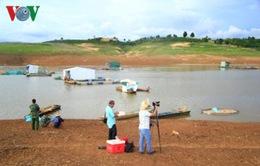 Kon Tum: Khoanh nợ cho các hộ có cá chết tại lồng hồ thủy điện