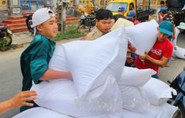 Hoàn thành cấp gạo hỗ trợ nhân dân trước 30 Tết