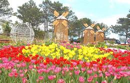 Phát miễn phí 10.000 bản đồ du lịch trong dịp Festival hoa Đà Lạt