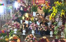 Khai mạc chợ hoa xuân truyền thống năm 2017