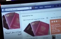 Thâm nhập thị trường hộ chiếu giả vào châu Âu