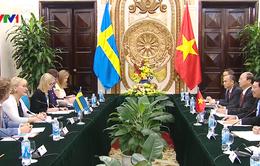 Phó Thủ tướng hội đàm với Bộ trưởng Bộ Ngoại giao Thụy Điển