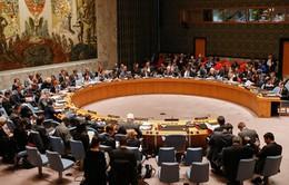 Hội đồng Bảo an Liên Hợp Quốc bỏ phiếu về vụ tấn công khí độc ở Syria