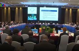 Khai mạc Hội nghị quan chức cao cấp APEC (SOM3): Thúc đẩy các ưu tiên hợp tác của năm APEC