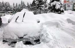 Bão tuyết gây khó khăn cho giao thông tại Nhật Bản