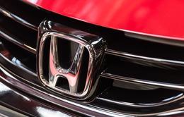 Nhà máy của Honda tạm ngừng sản xuất vì mã độc WannaCry