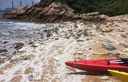 Đóng cửa 13 bãi biển ở Hong Kong (Trung Quốc) sau sự cố tràn dầu