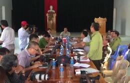 UBND tỉnh Quảng Nam họp báo thông tin về vụ phá rừng tại Tiên Lãnh