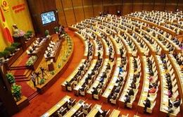 Vấn đề nông nghiệp được nhiều đại biểu Quốc hội đi sâu phân tích