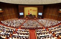 Quốc hội thảo luận về an toàn thực phẩm