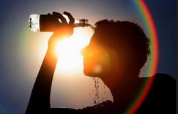 2016 - Năm nóng kỷ lục trong lịch sử