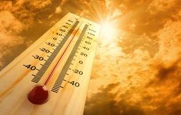 Nhiệt độ tại các thành phố sẽ tăng 8 độ C vào cuối thế kỷ
