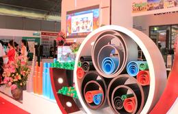 Thị trường ống thép, ống nhựa Việt Nam: Doanh nghiệp tư nhân bứt phá nhờ sự năng động