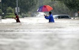 Lũ lụt nghiêm trọng cô lập thành phố lớn thứ tư của Mỹ