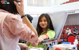 Hàng ngàn bạn trẻ hăng hái tham gia hiến máu tại ngày hội Chủ nhật Đỏ 2017