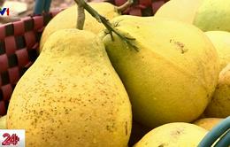 Xây dựng chợ đầu mối nông sản tại Hậu Giang
