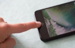 Apple sẽ khai tử tính năng Touch ID khỏi iPhone vào năm 2018?