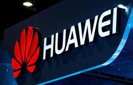 Một số nhân viên Huawei bị cáo buộc làm gián điệp cho LeEco
