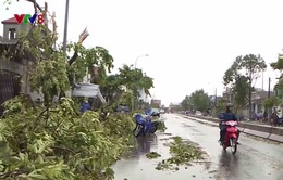 Bão số 10 làm gẫy đổ nhiều cột điện, tốc mái nhà cửa tại Thừa Thiên Huế