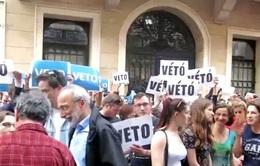 Luật Giáo dục ĐH mới tại Hungary có ảnh hưởng tới cộng đồng người Việt?