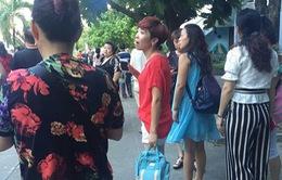 """Đà Nẵng báo cáo tình trạng hướng dẫn viên du lịch Trung Quốc hoạt động """"chui"""""""