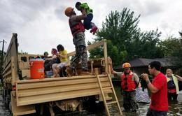 Mỹ: Làm chuỗi người để cứu cụ già và phụ nữ lâm bồn trong nước lũ