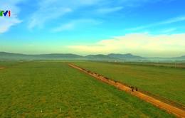 Khuyến nghị chính sách thúc đẩy nông nghiệp hữu cơ