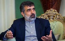 Iran và Nga nhất trí hợp tác trong lĩnh vực hạt nhân